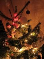 La maison s'illumine, Noël approche…
