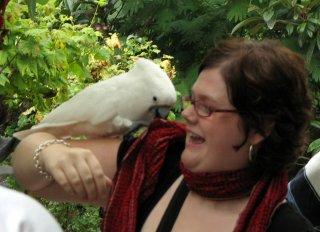 Jessica et le perroquet