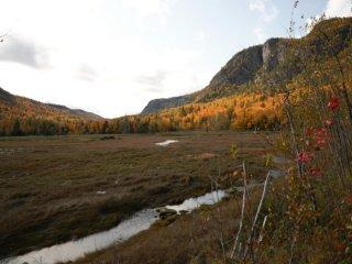 Une vue du parc du Fjord Saguenay