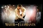 Les films du mois : De l'eau pour les éléphants