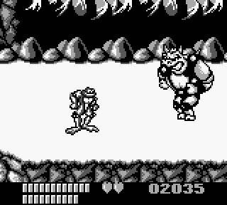 Battletoads (GB)