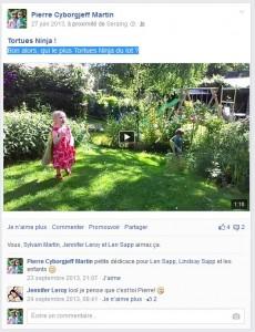 Facebook juin 2013 - Tortue Ninja