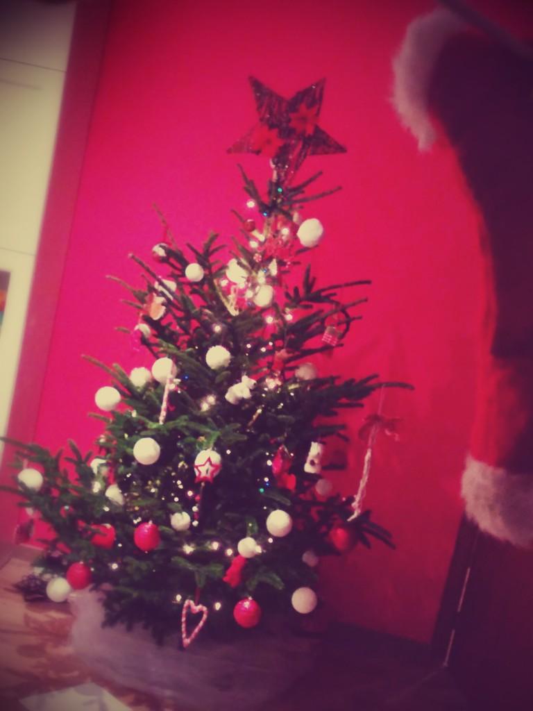 Notre Sapin de Noel 2014