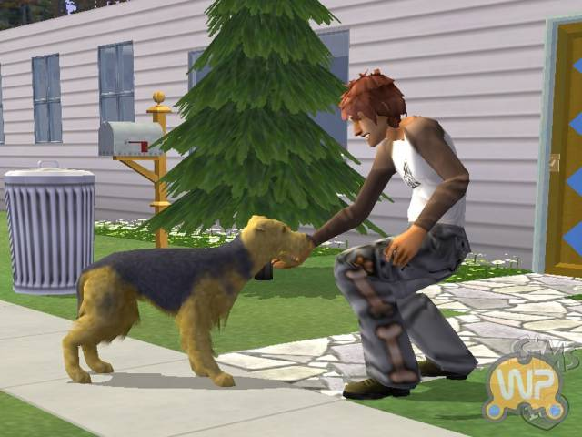 Les Sims 2 : Animaux & cie - PS2 (Electronic Arts - Maxis, 2006)