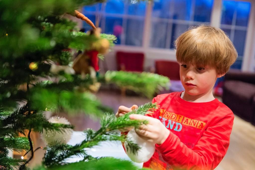 on prépare le Sapin de Noël - 2015