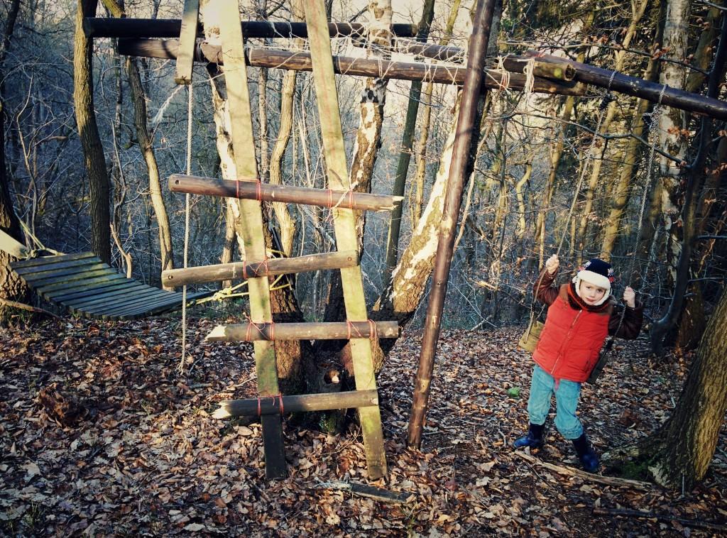 Découverte surprise dans les bois d'Avister