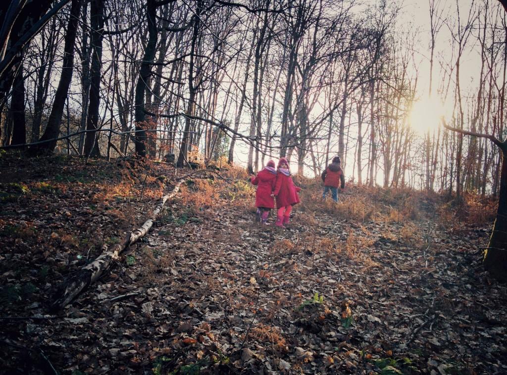 Dans les bois d'Avister