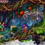 Shantae Risky's Revenge - DSi