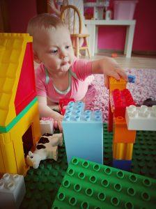 Rose en mode Constructor - 7 mois