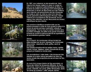 Le musée du dinosaure, Mèze