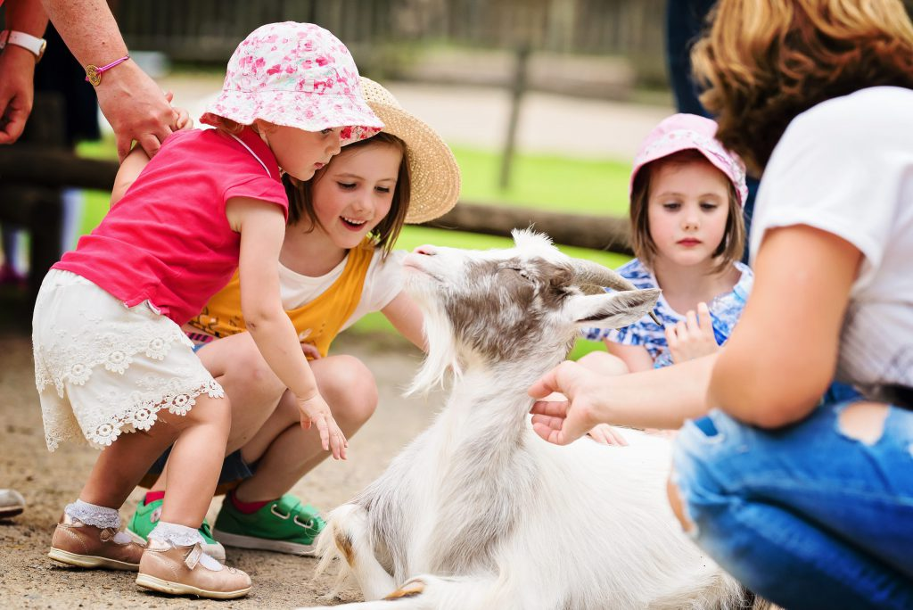 Un petit tour à l'intérieur de la petite ferme ! Les enfants aiment toujours cette proximité avec les animaux ! – à GaiaZOO.