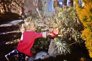 Chasse aux Oeufs dans le domaine d'Une Campagne en Provence