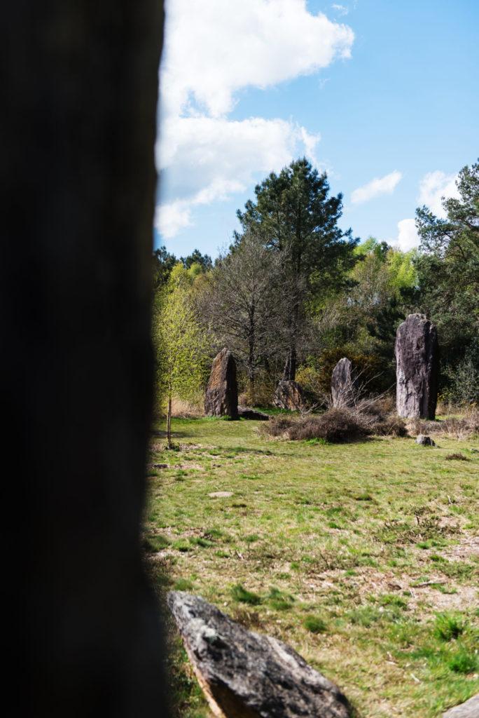 Promenade dans le domaine des Menhirs de Monteneuf