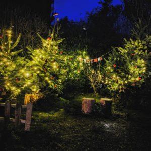 On prépare le décors de Noël - Petite Snorkys Photography