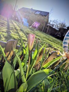 Et timidement, le printemps sort de son lit