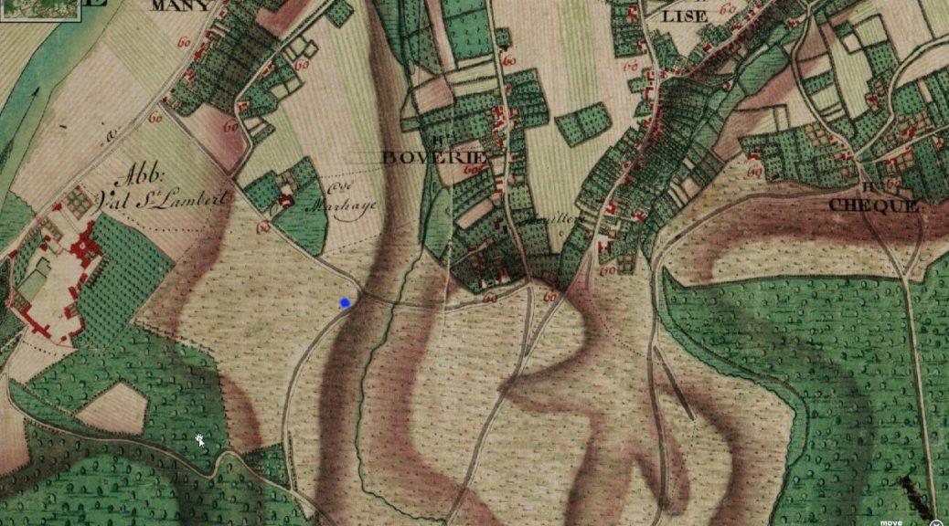 Voici à quoi ressemblait mon quartier, La Bergerie en 1777. Le point bleu, c'est chez moi... mais pas de maison, que des prés pour les moutons. On ne trouve que Cte de Marhaye, faisant référénce à la rue Basse Marhaye.