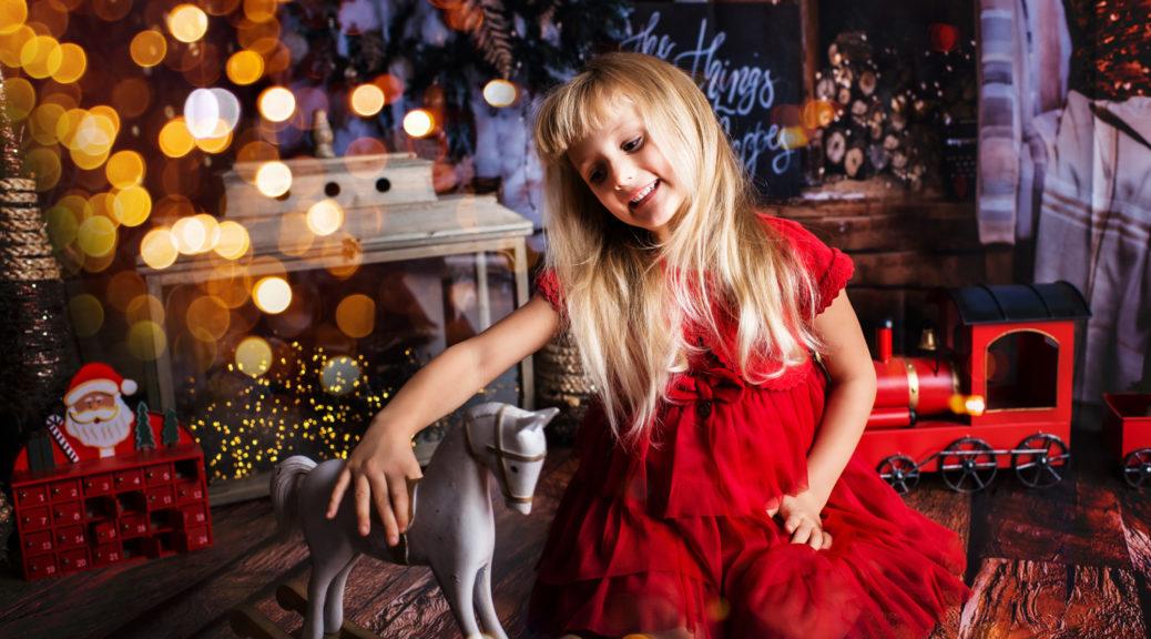 Petite Snorkys Photography - Rose de Noël - 2020