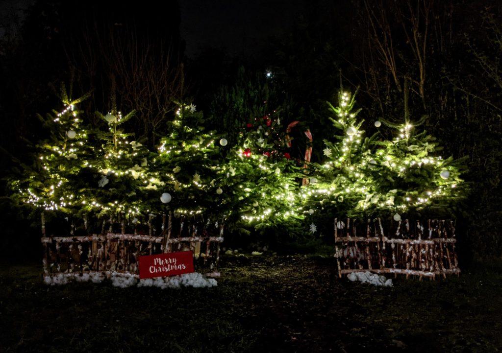 Petit souvenir du soir de la déco de Noël
