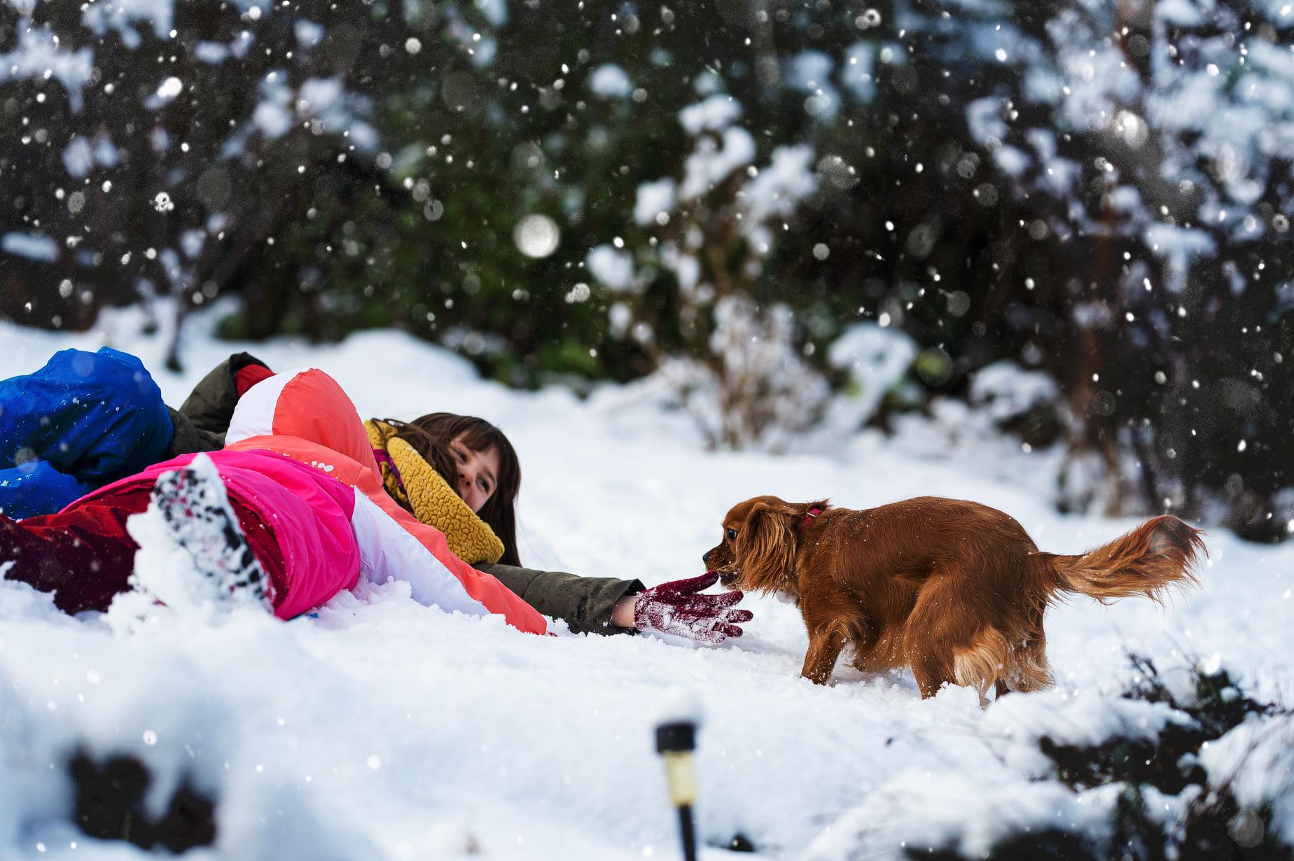 De la neige dans le jardin, Padmé en profite !