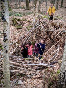 Petite balade dans les bois de Strivay