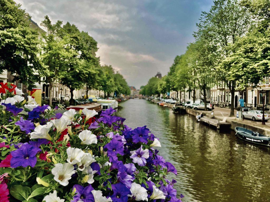 Amsterdam bucolique